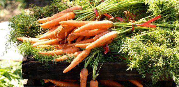 7 dicas práticas para fazer uma hortinha em casa
