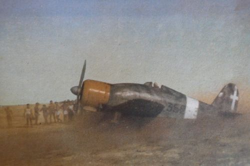 """Fiat G.50 """"Freccia"""" (Arrow) of the Regia Aeronautica taking off in North Africa. While it had vastly-outclassed weaponry in the form of only two Breda-SAFAT 12.7mm guns, it still served with distinction. In Finnish hands, 35 of them managed to rack up an unbeatable 33/1 kill ratio against the Red Air Force, although they arrived too late to make much of an impact. They proved to be nearly worthless as the war progressed, simply too slow and too poorly-armed to go toe-to-toe against Allied..."""