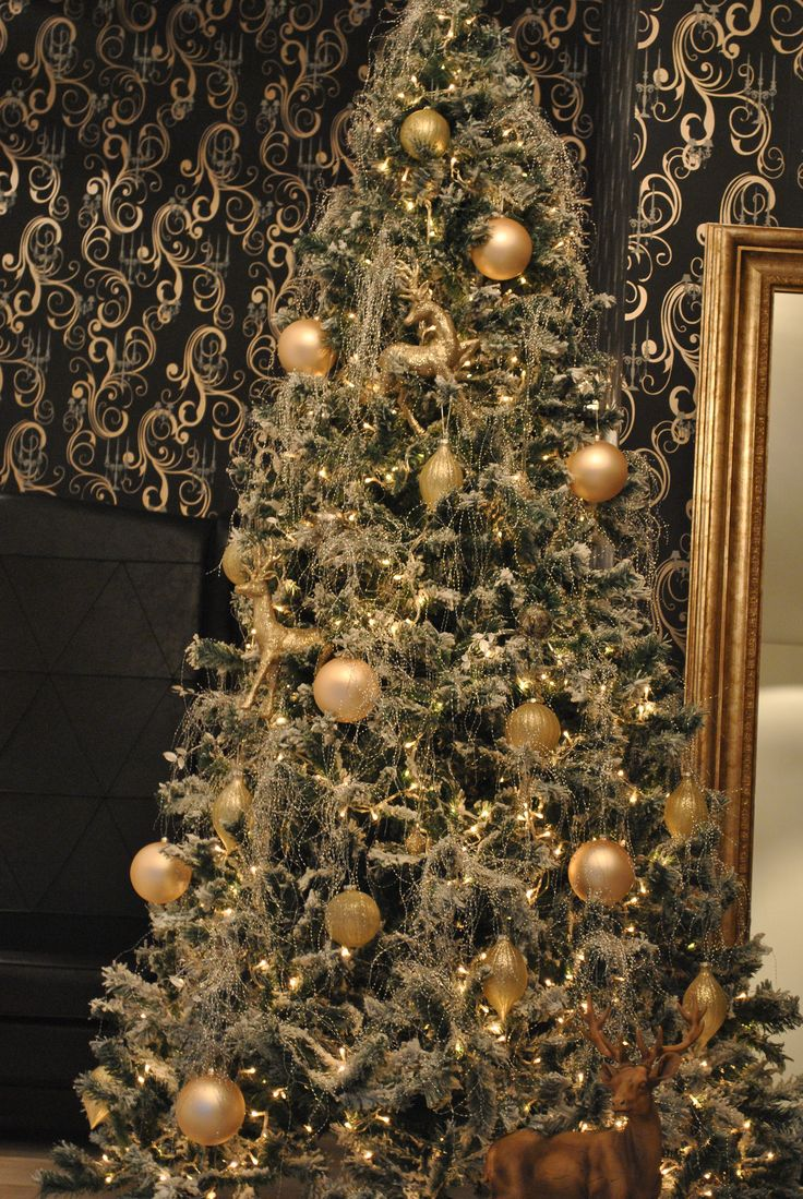 ♫ Oh Christmas tree, oh Christmas tree, of all the trees most lovely ♫