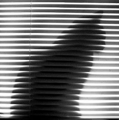 Shadow: Shadows Cat, Cat Shadows, Awesome Pictures, Black And White, Shadowcat, Op Art, Kitty Shadows, Cat Silhouette, White Cat