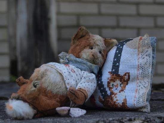 Lazy cat Nicolas By Ljudmila Zivel - Bear Pile