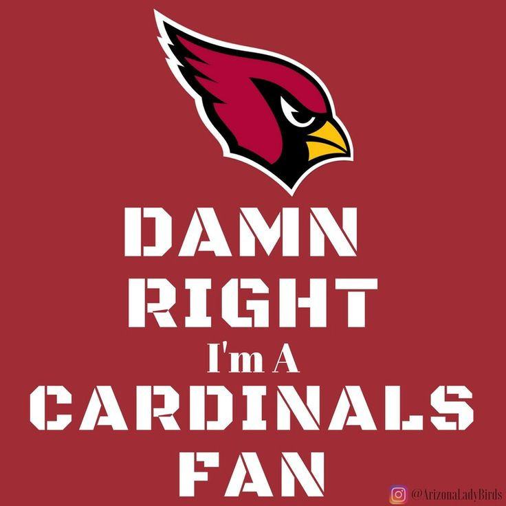 Arizona Cardinals Super Fans 2016 @ArizonaLadyBirds #AZLadyBirds