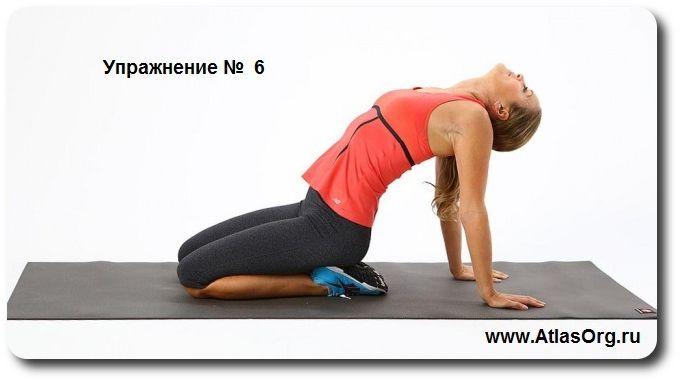 упражнения для шеи  http://atlasorg.ru