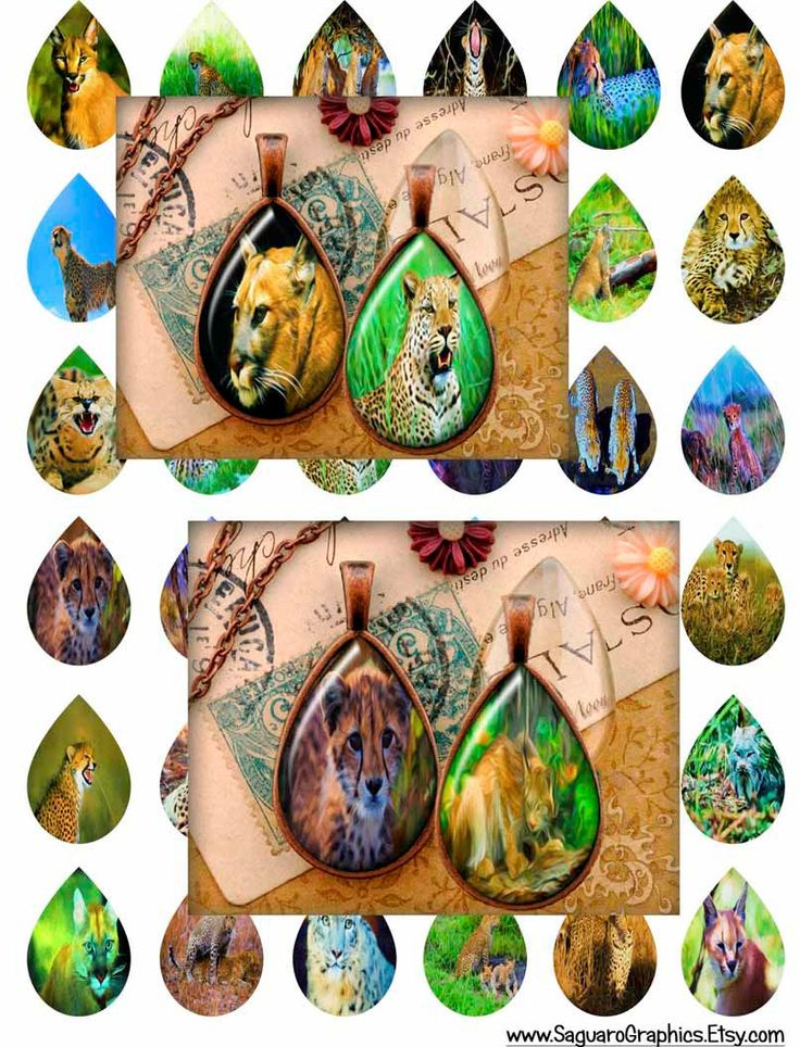 Big Cats Paintings Art - - Digital Collage Sheets - 28x40mm Teardrops for Jewelry Makers, Party Favors, Wedding Projects, Crafts by SaguaroGraphics on Etsy