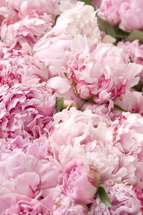 Jo Malone London | A Scented Wedding #Flowers #Peony #Inspiration