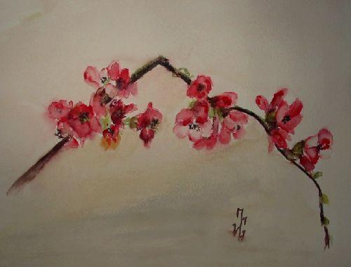 Pommier du japon dessin peinture | Pommier du Japon -Aquarelle - Fevrier 2008