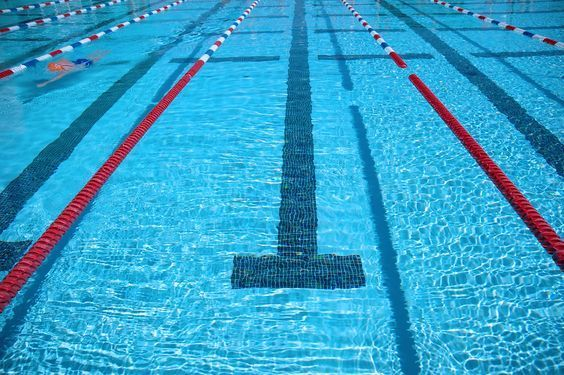 Sara McLarty's seven swim technique tips that really work from The Beginner Triathlete's Guidebook.