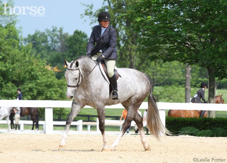 School these exercises at home to get in the ribbons in your hunter under saddle classes.