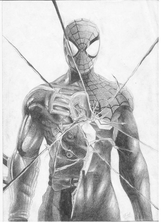 Spider Man Noir Drawing