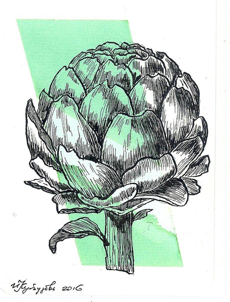 artichoke. watercolor and ink.