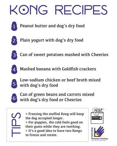 Nebraska humane Society #dog #kong #recipes