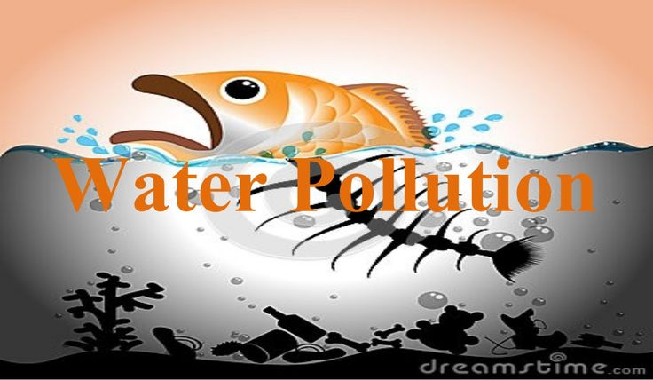 Effects of Water Pollution Devastating to people and animals, fish, and birds. Unsuitable for drinking, recreation, agricu...