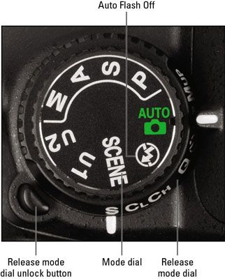 Adjusting Automatic Features with a Nikon D7000
