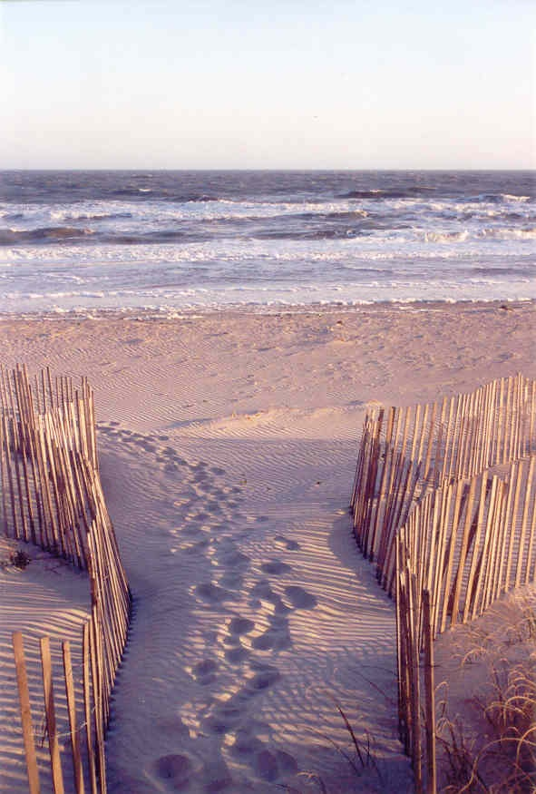 Topsail Island already booked. Can't wait to see how excited the boys will be to play in the Ocean!