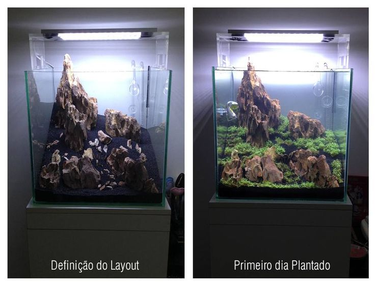 Dimensions 37 x 37 x 37 cube volume 50 litres 37 for Aquarium 50 litres occasion
