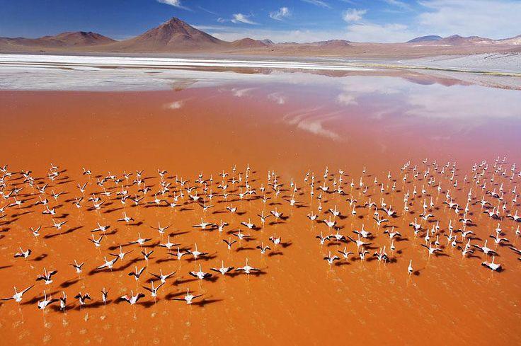 Les plus beaux endroits et paysages en Amérique du Sud  par Globe-Trotting, A voir absolument en Amérique Latine