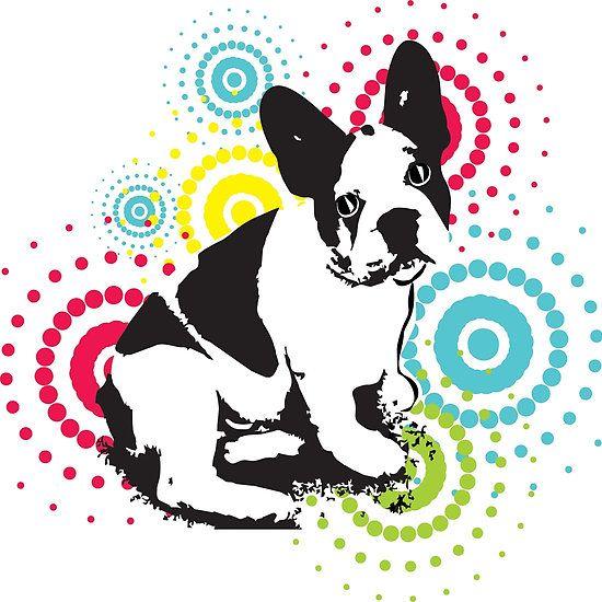 Philippe the French Bulldog