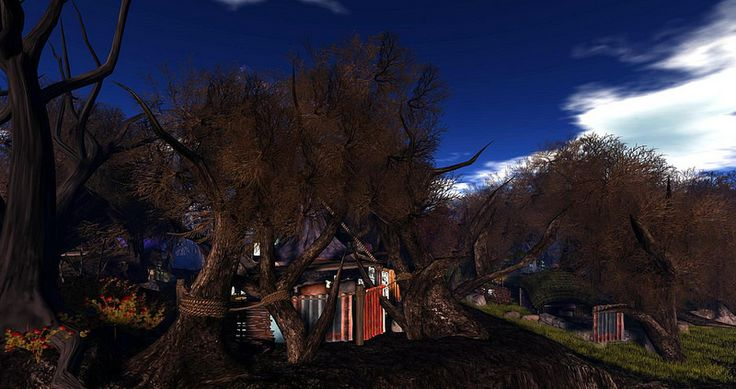 Fantasy Faire 2014 - Mourningvale Thicket_001