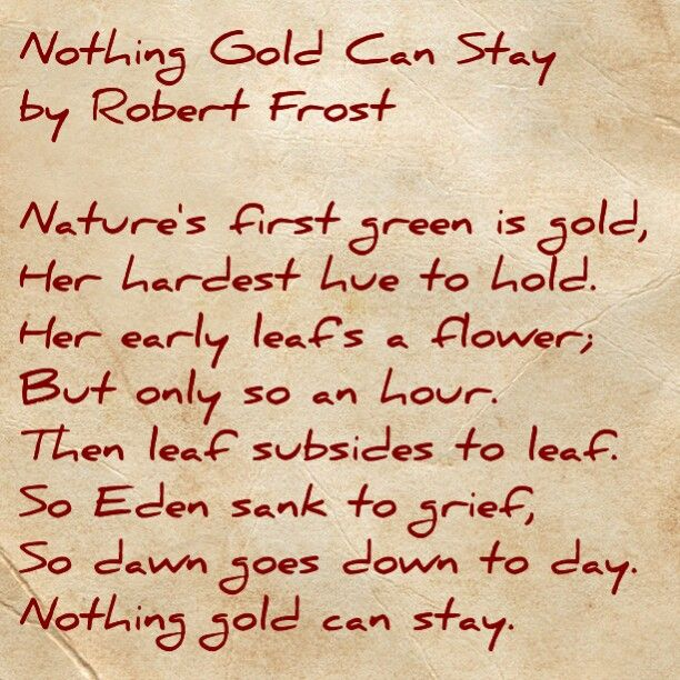Nothing gold can stay this is such an amazing poem ive for Stay gold ponyboy