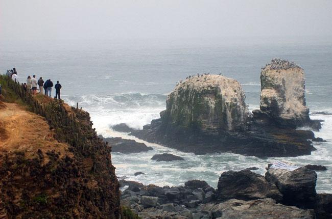Punta de Los Lobos, Pichilemu, Chile