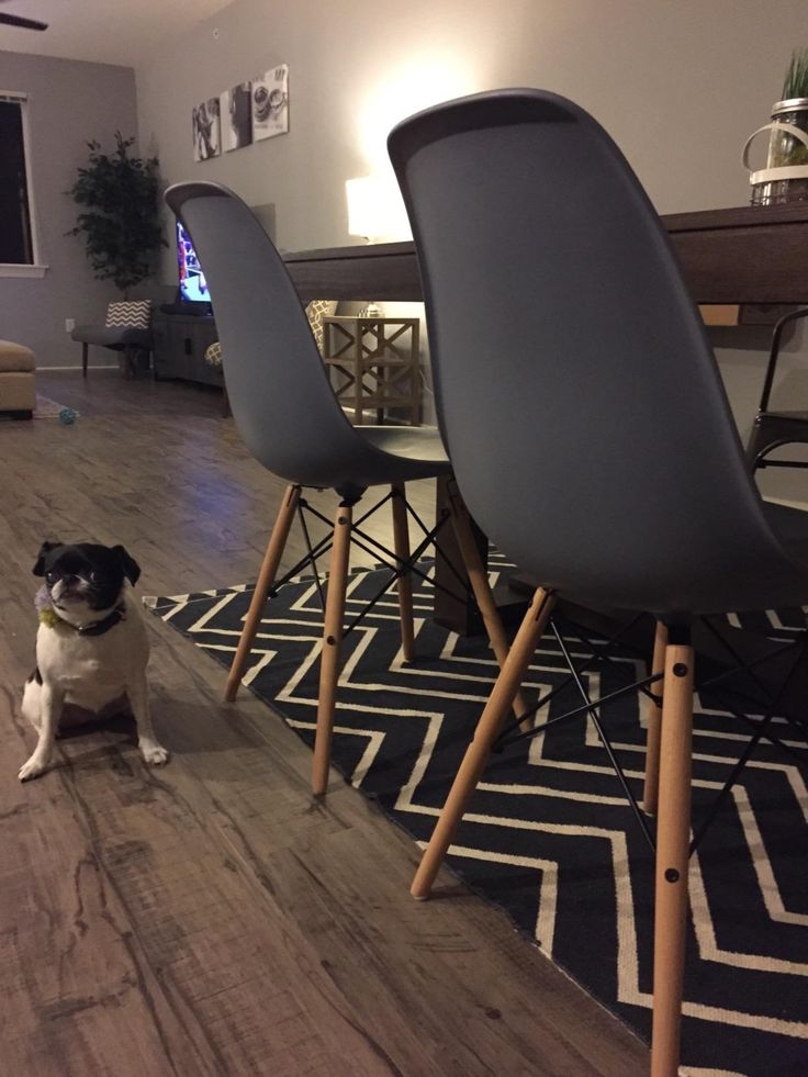 Amazon.com: Poly And Bark Eames Style Molded Plastic Dowel Leg Side Chair.  Eames ChairsLunch RoomKitchen ...