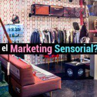 Marketing sensorial: ¿qué es y cémo mejora las ventas?