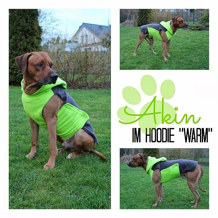 74 besten Hunde Bilder auf Pinterest | Haustiere, Hundeerziehung und ...