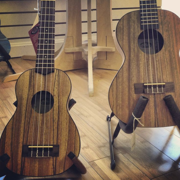 The Pacific Walnut #ukuleles are gorgeous instruments with a warm, articulate sound. A shop favorite!