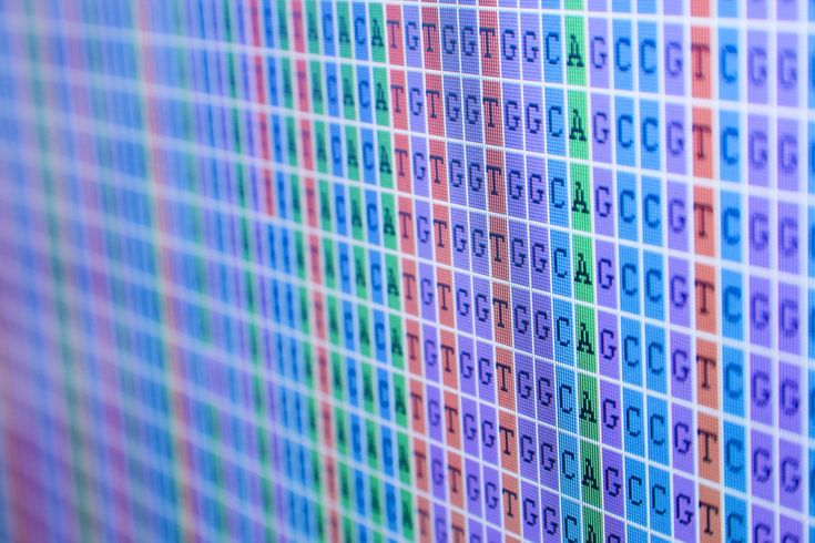 New Study Finds Parents Receptive To Having Baby's Genome Sequenced