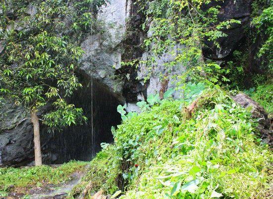 Laporan Penelitian: Manusia Menghuni Hutan Hujan 20 Ribu Tahun Lalu