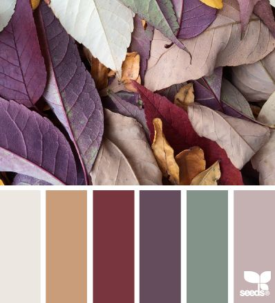 ༺༺༺♥Elles♥Heart♥Loves♥༺༺༺ ...........♥Art Color Charts♥........... #Color #Chart #ColorChart #Inspiration #Design #Moodboard #Paint #Palette #Decorate #Art #Renovate ~ ♥Fallen Tones - BY design-seeds