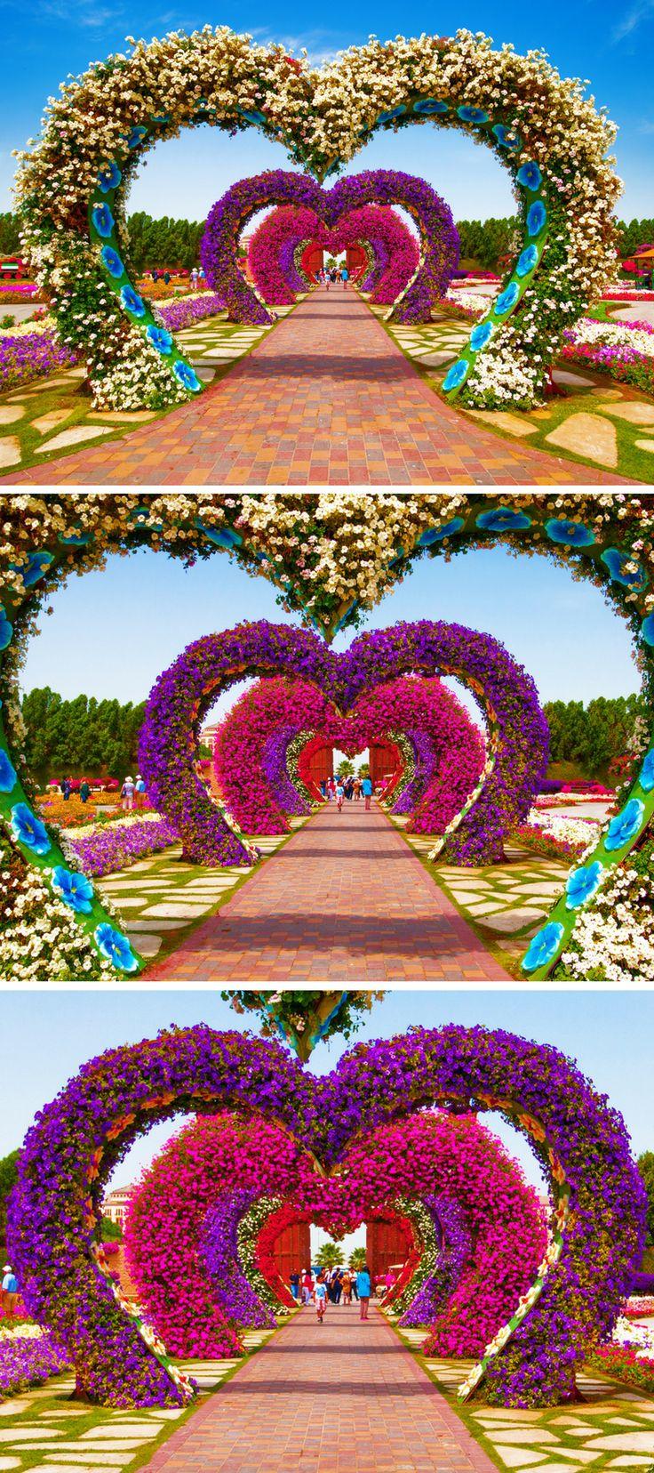 Dubai Miracle Garden! Top 10 Things to do in Dubai!