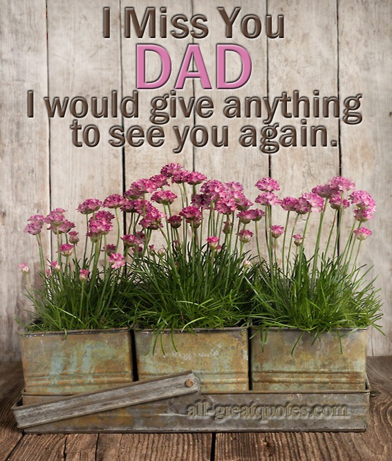 I Miss You DAD http://www.all-greatquotes.com/all-greatquotes/category/sympathy-pictures/#.UbndO6xJhum Facebook Share - http://www.facebook.com/pages/Condolences-Sympathy-Messages/276985769051067