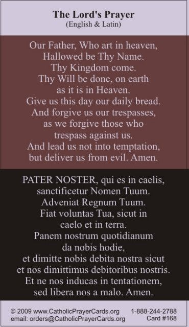 http://www.catholicprayercards.org/Latin_Holy_Cards/bilingual-our-father-prayer-card-lat-eng.html