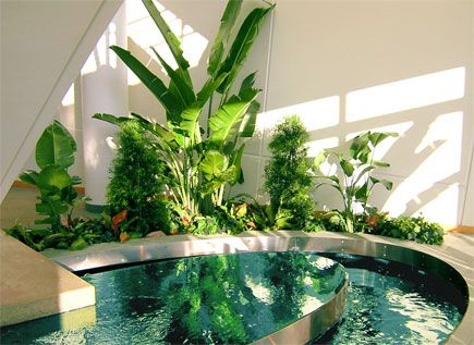 59 Best Images About Interior Landscaping Design On Pinterest