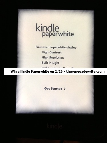 Read The Renegade Writer A Totally Unconventional Guide To