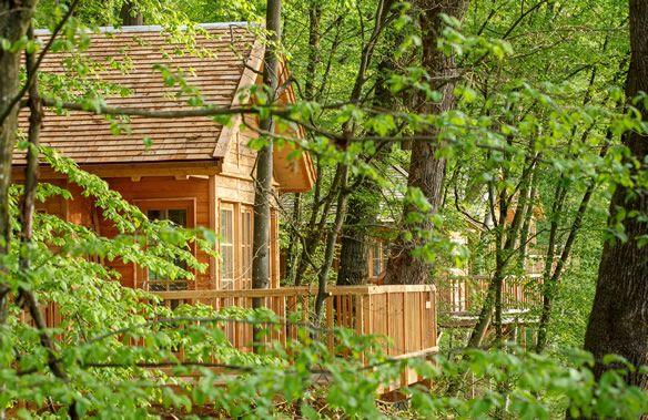 Die Lodge: Baumhaushotel SeeMÜHLE in Gräfendorf