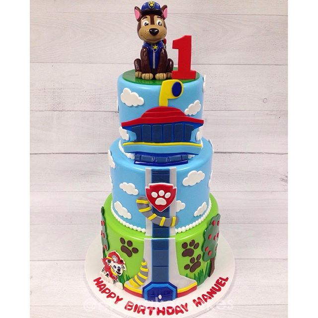 How To Make Paw Patrol Lookout Cake Google Search Paw