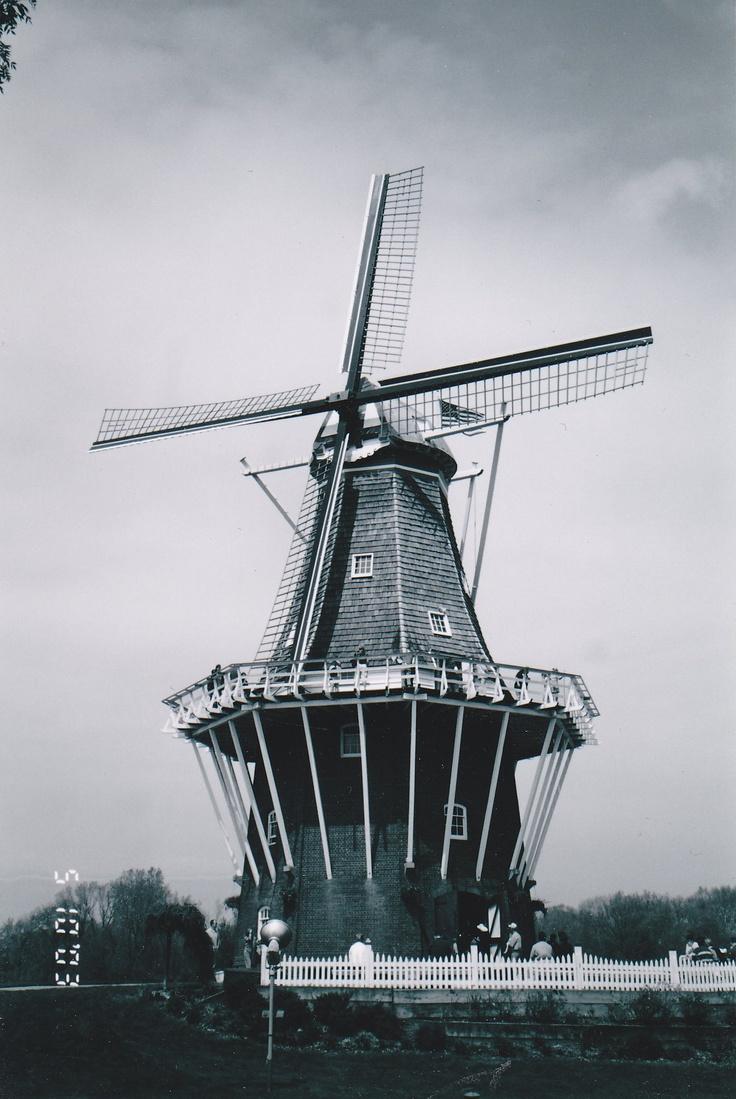 10 besten My pics Bilder auf Pinterest   Holland, 31. juli und Brücke