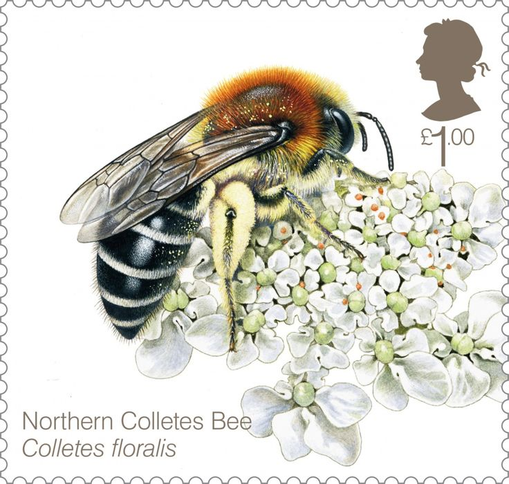 Image result for royal mail stamps bees