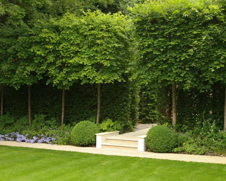 165 best images about topiary plants gardens on for Formal landscape design