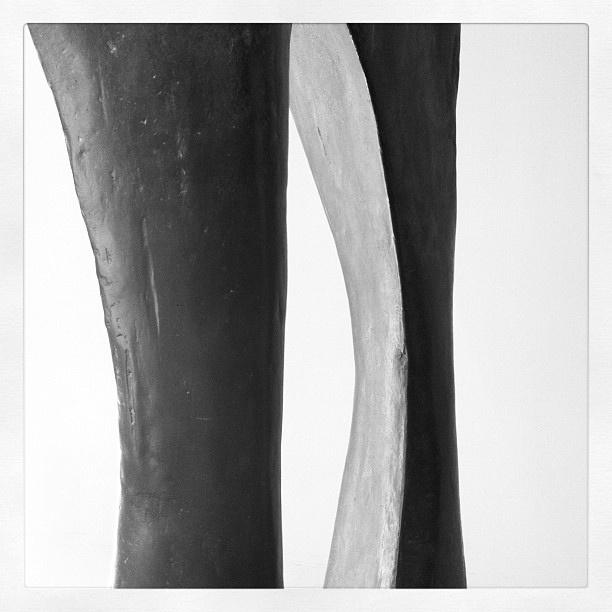 """Fotoscop al Taller """"Mirades Singulars"""" a la Fundació Joan Miró"""