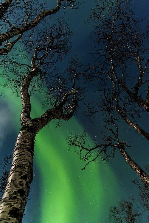 etherealvistas:  Artic fire (Norway) by Manuel Subirats   Website