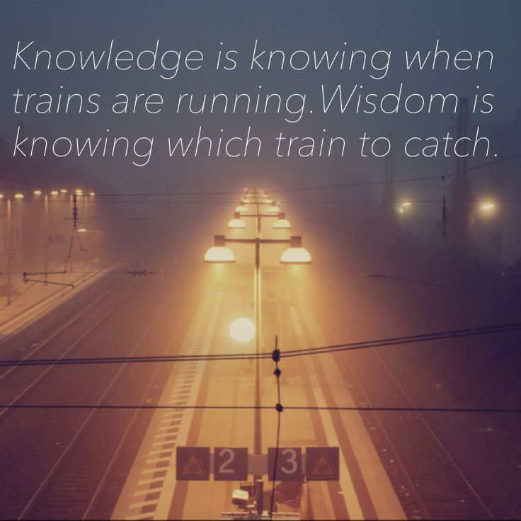 difference between knowledge and wisdom essay Many people mistake knowledge for wisdom because they are  appreciate why  it is vital to properly distinguish between the two  hello sir , can you please  help me to have some dimensions in wisdom vs knowledge essay.