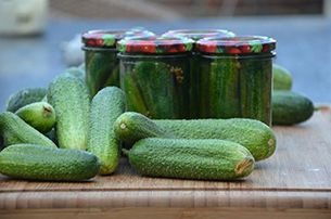Augurken inmaken is gemakkelijk. Met 4 augurkenplantjes heeft u voldoende augurken voor een heel jaar.