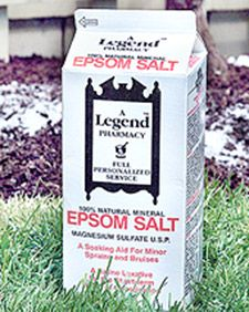 Epsom Salt is Magnesium Sulfate... Helps to produce bushier plants, produce more flowers, and deter pests. Tips for how much to use for different plants.