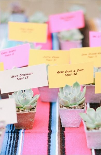 Succulent escort cards that double as guest gifts! (Photo by Brooke Aliceon via Wedding Chicks)