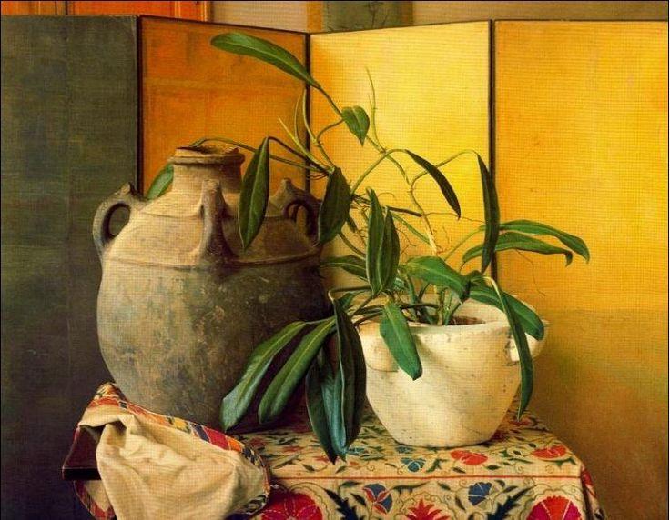 CLAUDIO BRAVO www.equilibriarte.net758 × 590Buscar por imagen Pubblicato da Augusto Marchetti il 28 febbraio 2007 amanda-ruso pintora - Buscar con Google