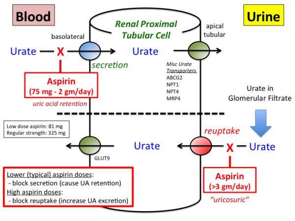 45 best aspirin poisoning images on pinterest