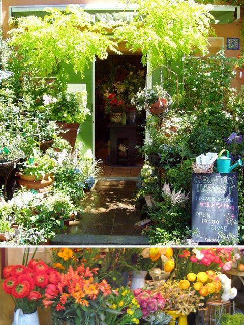 【ELLE DECOR】素朴な草花も美しい主役に変える「カントリーハーベスト」|エル・オンライン